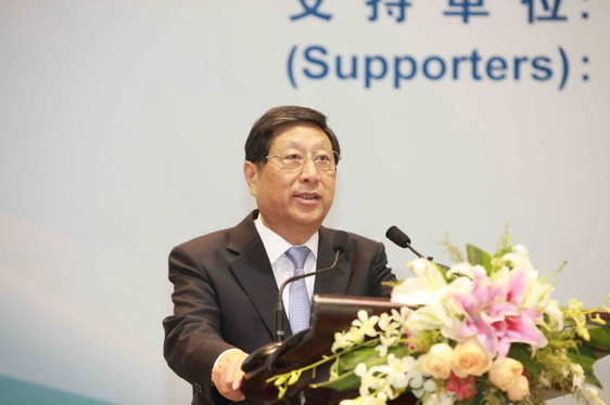 Zhang Ping, Chairman, National Development and Reform Commission